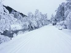 14.12.17 – 20 km of trails are already open!